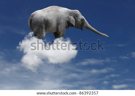 A cute baby elephant floating on a puffy cloud in a blue sky. - stock photo