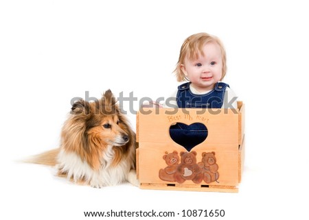 A cute baby girl with a Shetland Sheepdog on white background - stock photo
