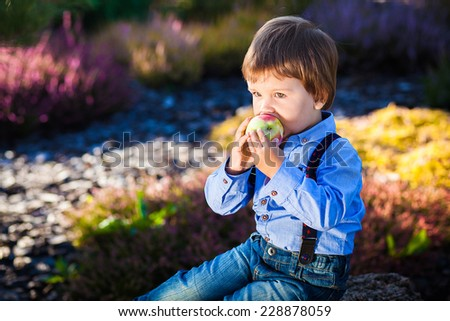 A cute boy with an apple in the summer garden - stock photo
