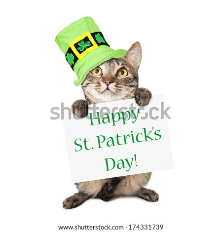 A cute brown and black striped cat wearing a festive green hat while holding up a sign with the words Happy St. Patrick's Day - stock photo