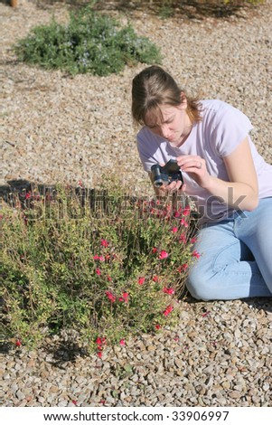 A cute girl taking macro pictures of small red flowers in a garden in the desert - stock photo