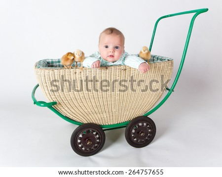 a cute little baby with chicks in a pram - stock photo