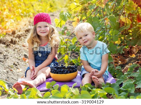 A cute little girl and her younger brother outdoor are eating grapes in autumn vineyard