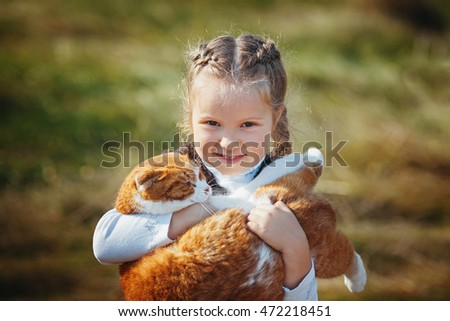A cute little girl holds a large white and red cat