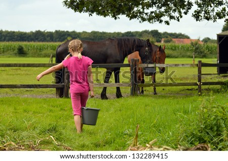 A cute little girl with bucket of water feeding horses in a pasture - stock photo