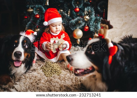 A cute smiling 2-years old girl in a Santa hat and red dress against Christmas tree and bernese Mountain Dogs - stock photo