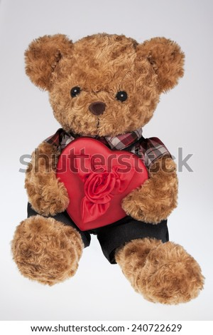 A cute teddy bear holding a Red Heart shaped box isolated on a white background - stock photo