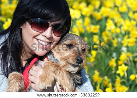 A cute terrier mix breed pup being held by his owner posing in front of the Spring daffodil flowers.