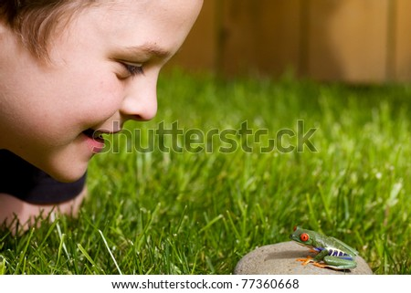 a cute young boy looking at a small red eyed tree frog outside - stock photo