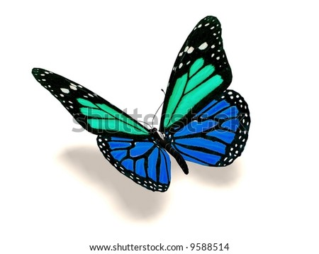 A 3D image of a turquoise and blue butterfly. - stock photo
