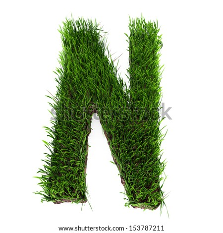 A 3D rendering of an upper case N in grass - stock photo