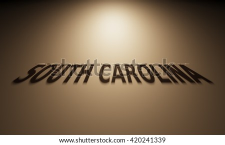 A 3D Rendering of the Shadow of an upside down text that reads South Carolina.