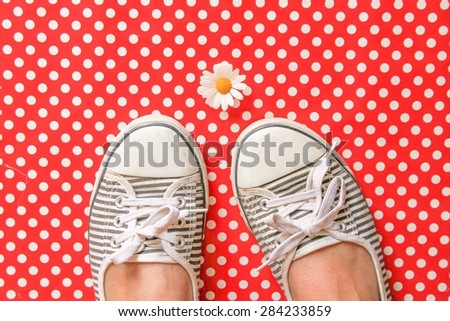 A daisy and striped pumps on red polka dots - stock photo