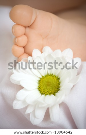 A daisy flower next to a baby's foot. - stock photo