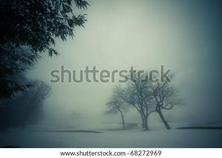 A dark, misty and mysterious winterscape scene - stock photo