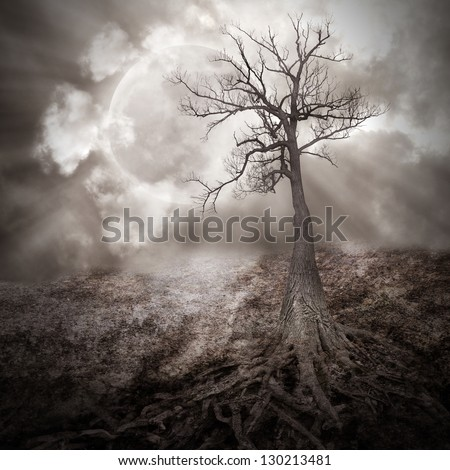 A dark tree is alone in the woods with large roots growing on an old, dry landscape against a full moon with clouds in the sky for a sad, scary or time concept. - stock photo