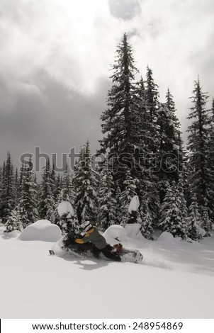 a day on the snowmobile throttle