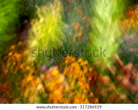 a de-focused motion blur abstract photo of garden flowers