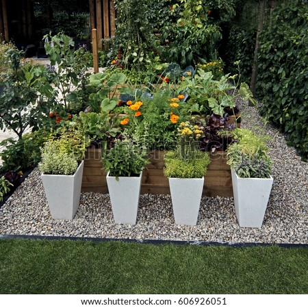 A Decorative Herb And Vegetable Garden With Planted Containers In An Urban  Garden