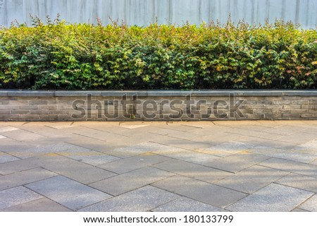 A decorative plants at sidewalk - stock photo