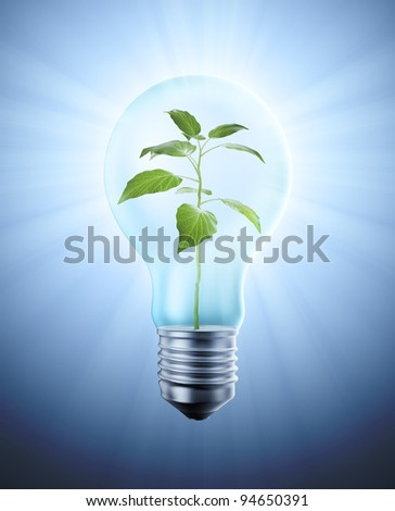 A delicate plant inside a light bulb - nature conservation concept