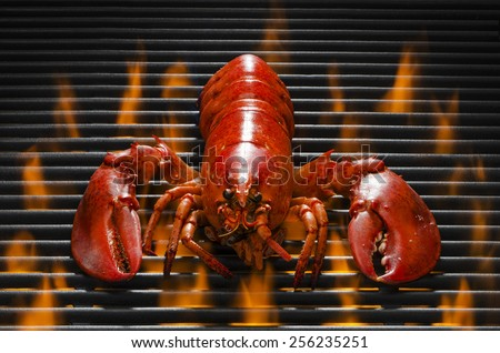 A Delicious Red Lobster on a Hot Barbecue Grill - stock photo