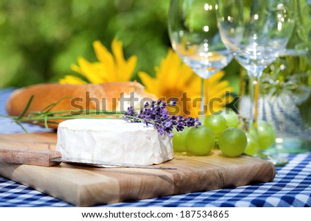 A delicious summer lunch in the garden - stock photo