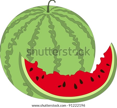 White part watermelon viagra