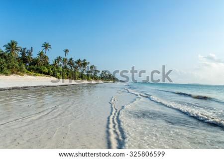 A deserted beach on the tropical island of Zanzibar - stock photo