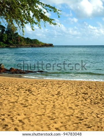 A deserted beach with golden sand, blue ocean. green foliage and blue sky with white clouds.  There is room for copy. - stock photo