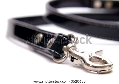 A designer dog lead of black patent leather. Isolated on white with a very shallow focus on the clasp. - stock photo