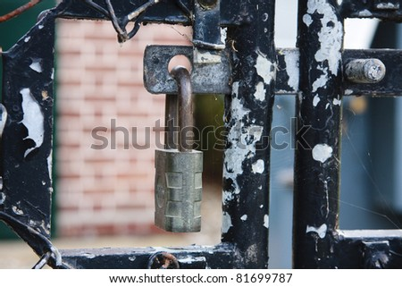 A detail of a padlock on a gate with paint peeling