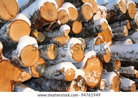 A detail of stacked birch logs covered with snow - stock photo