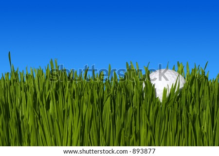A Detailed Low Angle Close Up of a Golf Ball, Lying In the Green Grass with Blue Sky Copy Space ~ Clipping Path - stock photo