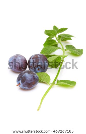 A diet food and healthy lifestyle concept: An aromatic colorful  tasty delicious fruits. A sweet plums and mint. Isolated on white.