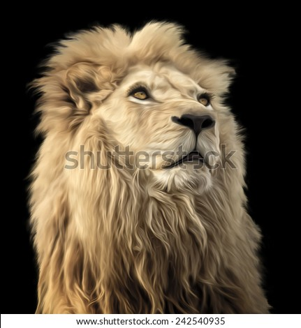 A digital oil painting of a majestic and proud Lion on a black background. - stock photo