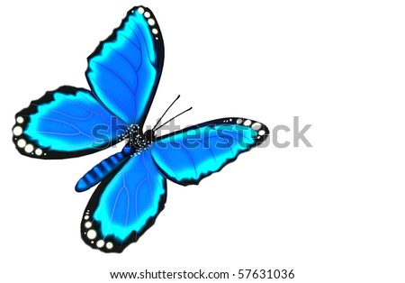 A digital render of a blue morpho butterfly on plain white background.
