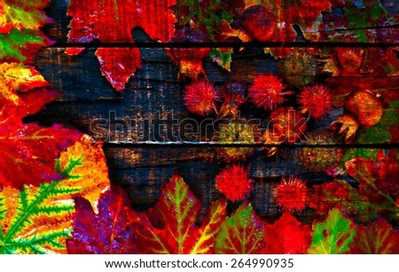 A digitally constructed painting of Colorful autumn leaves and pods arranged on wooden boards - stock photo