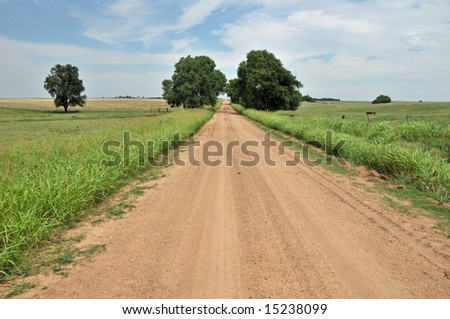 A dirt road leads to the horizon framed by two trees - stock photo