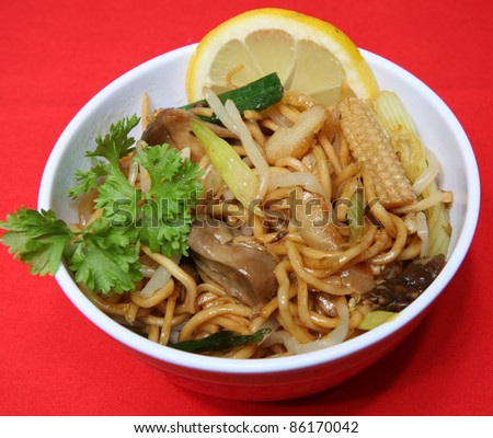 A dish of vegetable chow mein - stock photo