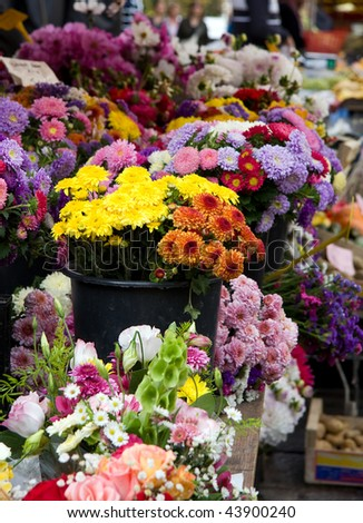 A display of flowers for sale at a market