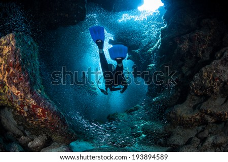 A diver explores the cracks, crevices and holes in a coral reef on the island of Grand Cayman. Many reef species, such as silversides, prefer the shadowed protection of these dark areas. - stock photo