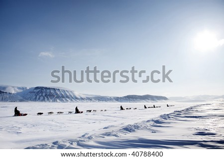 A dog sled expedition across a barren winter landscape - stock photo