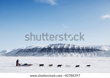 A dog sled running on a barren winter landscape - stock photo