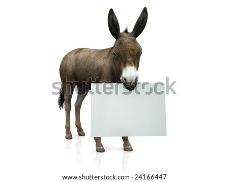A donkey holding a blank sign in his mouth. - stock photo