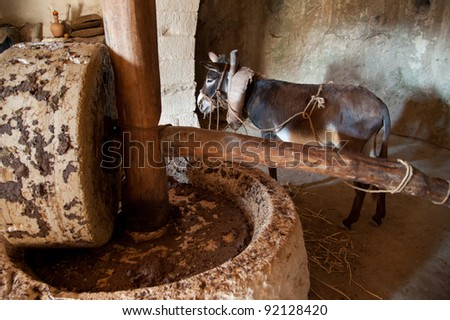 A donkey-powered olive oil press in which the animal drives a heavy stone to crush the oil from olives. - stock photo