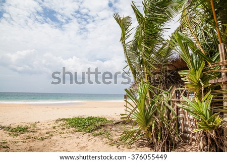 A dream beach at the Indian Ocean with luminous blue sky and a turquoise-blue glittering ocean with coconut palm trees at a fine sandy beach - stock photo