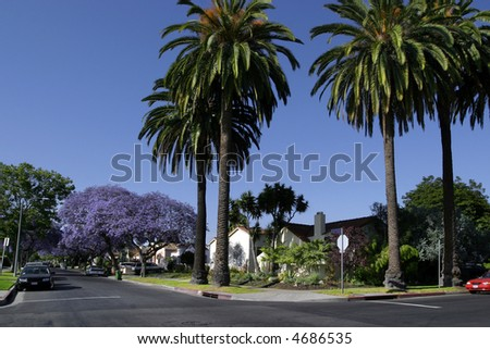 A dream home in California. - stock photo