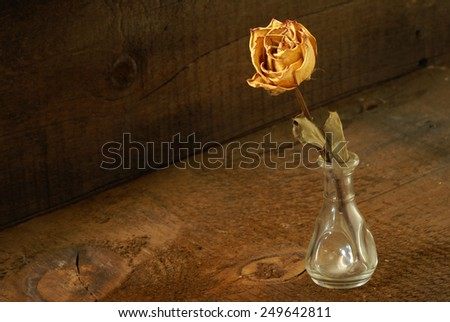A dried rose in a vase on some textured wood. - stock photo
