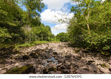 A dried up riverbed in a forest - stock photo